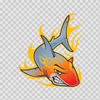 Shark With Flames 01466