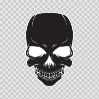 Skull 02435