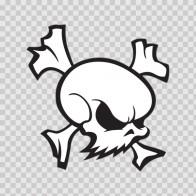 Skull 02586