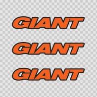 Giant mountain bike logo 02842
